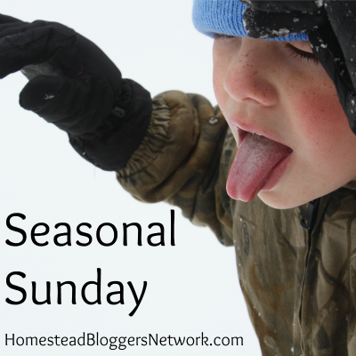 Seasonal Sunday Linkup