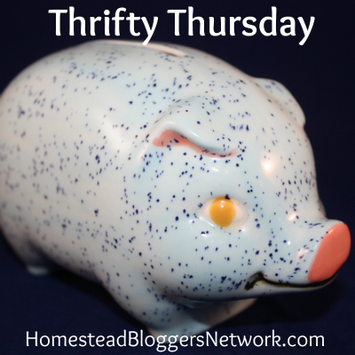 Thrifty Thursday Linkup