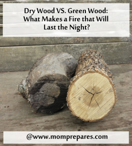 Fires that Last the Night: Dry Wood vs. Green Wood