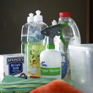 Donna's Favorite Green Cleaning Supplies