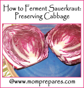 How to Ferment Sauerkraut: Preserving Cabbage