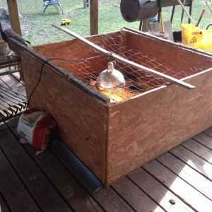 Building a Better Brooder Box (or at least a tough one!)