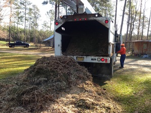 Back to Eden Garden Update: First loads of mulch!