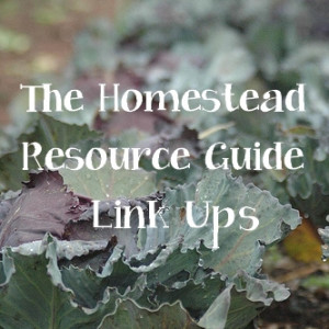 Introducing the Homestead Resource Guide Link Ups