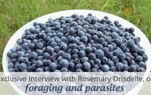 Foraging and Parasites – Tips for Finding Safe Wild Foods