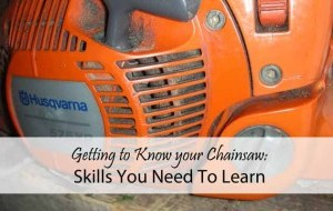 Chainsaw Skills You Need to Learn