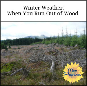Winter Weather: What To Do When You Run Out of Wood