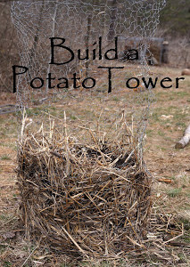 How to Build a Potato Tower