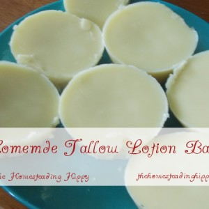 Homemade Tallow Lotion Bars