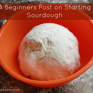 A Beginners Post on Starting Sourdough