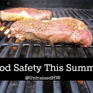 Keep Your Food Fresh and Safe this Summer