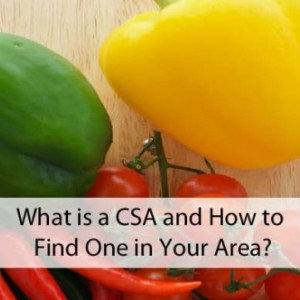 How to Find a CSA in Your Area