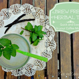 Herbal Tea Brewed in your Coffee Maker