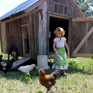 A Moveable Chicken Coop Made From Reclaimed Lumber