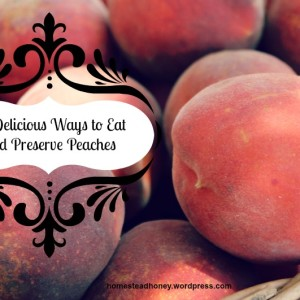 !0 Delicious Ways to Eat and Preserve Peaches