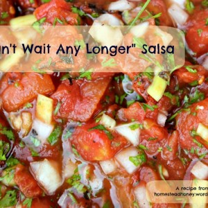 """I Can't Wait Any Longer"" Salsa"