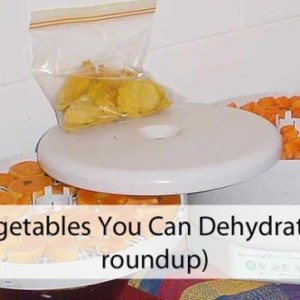 Common Vegetables You Can Dry