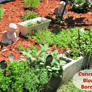 Concrete (Cinder) Block Herb Garden Border