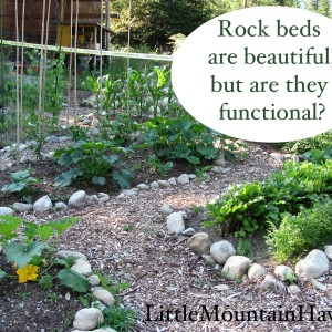 rock beds are beautiful but are they functional?