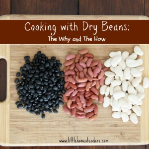 Cooking with Dry Beans