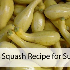 Yellow Squash Summer Recipe
