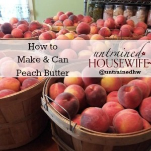 Making and Canning Peach Butter