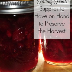 Falling Fruit: Preserving Supplies to Keep on Hand