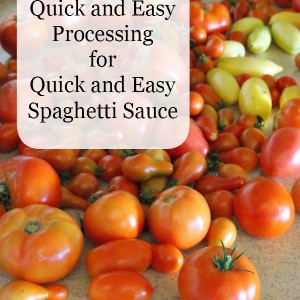A Quick and Easy Way to Process Spaghetti Sauce