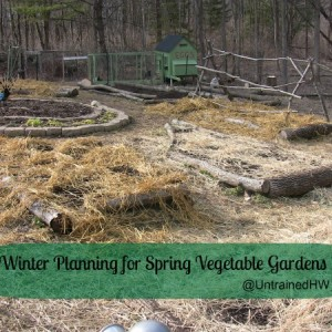 Winter Planning for Gardens