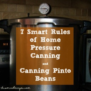 Canning Pinto Beans and 7 Smart Rules to Pressure Canning