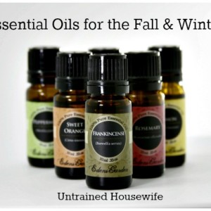 Essential Oils for the Fall and the Winter