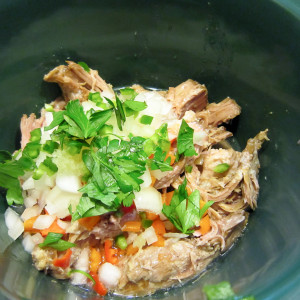 Mexican Style Pulled Pork
