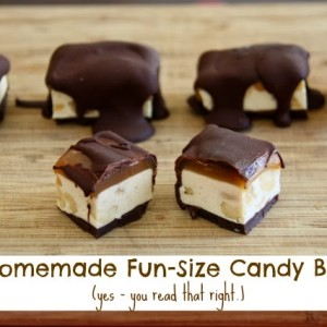 Homemade Fun Size Candy Bars