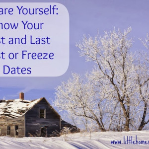 Knowing Your First and Last Frost Dates