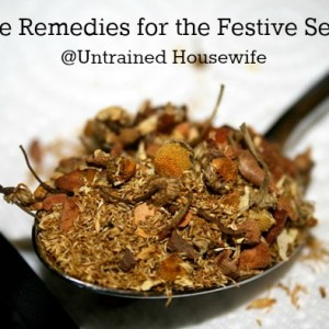 Herbs and Remedies for a Festive Season