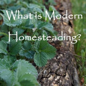 What is Modern Homesteading
