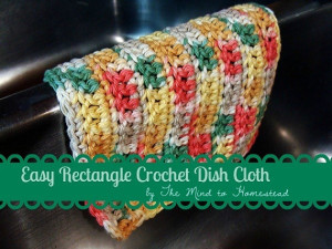 Washcloth Pattern PDF