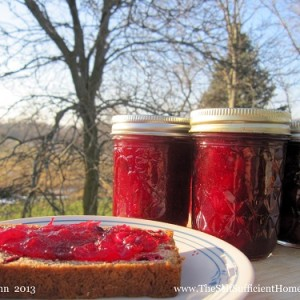 How to Make Cranberry Jam