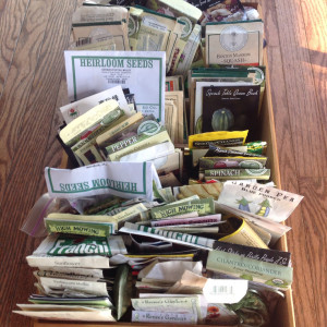 Reorganizing My Seed Collection