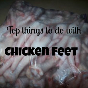 What To Do With Chicken Feet