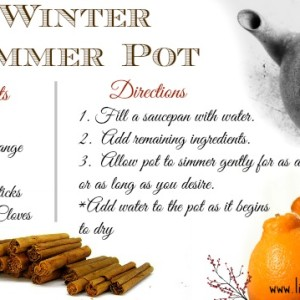 Winter Simmer Pot