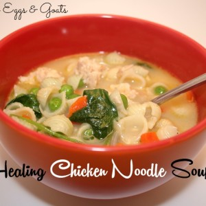 Healing Chicken Noodle Soup