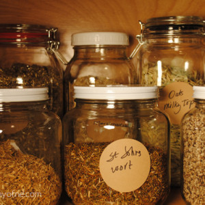 Can You Really Become Certified In Herbalism?