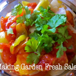 How to Make Garden Fresh Salsa