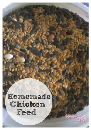 Diy Chicken Feed Homestead Bloggers Network