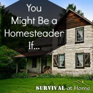 You Might Be a Homesteader If…