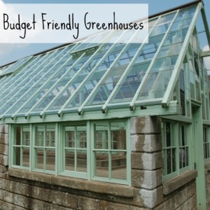A Greenhouse On a Budget