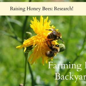 Raising Honey Bees: Research!