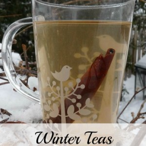 Free and Low Cost Winter Teas