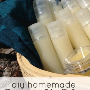 Make Your Own Homemade Beeswax Lip Balm